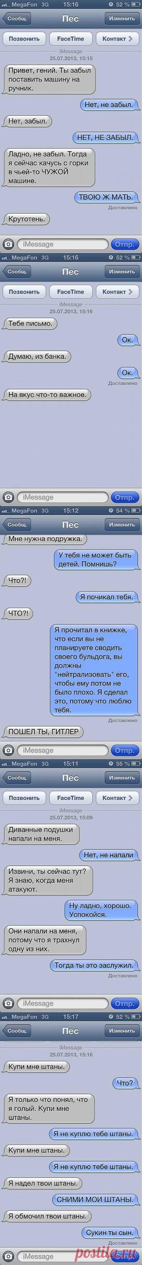 Еслибы собаки писали SMS