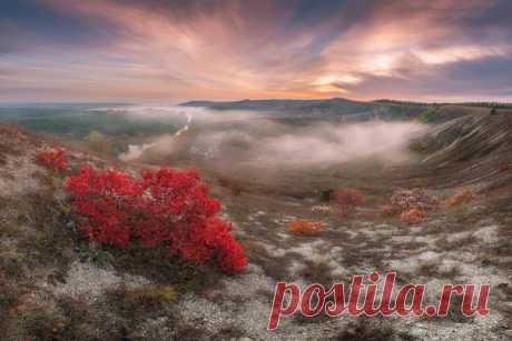Заповедник Меловая флора, Донецкая область. Автор фото — Dmytro Balkhovitin: