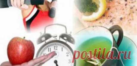 Как ускорить метаболизм? | Sport My Way | Sport - My Way