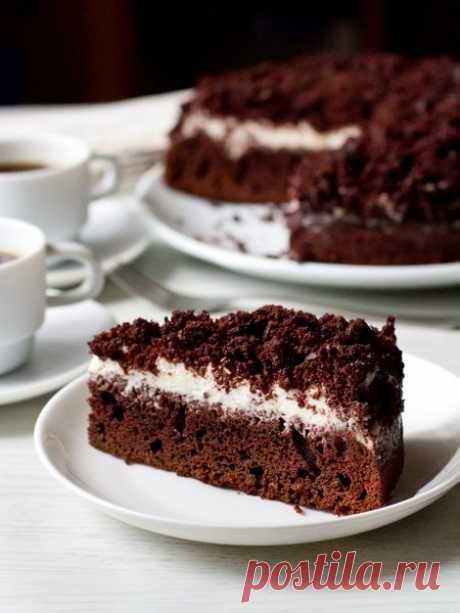 Рецепт шоколадно-кофейного пирога со сметанным кремом на Вкусном Блоге
