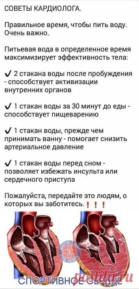 Посты по теме «ЗДОРОВЬЕ-3», добавленные пользователем Елена Елена Капорская на Постилу