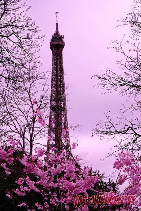 Paris: le printemps ... arrive ... mais le soleil tarde