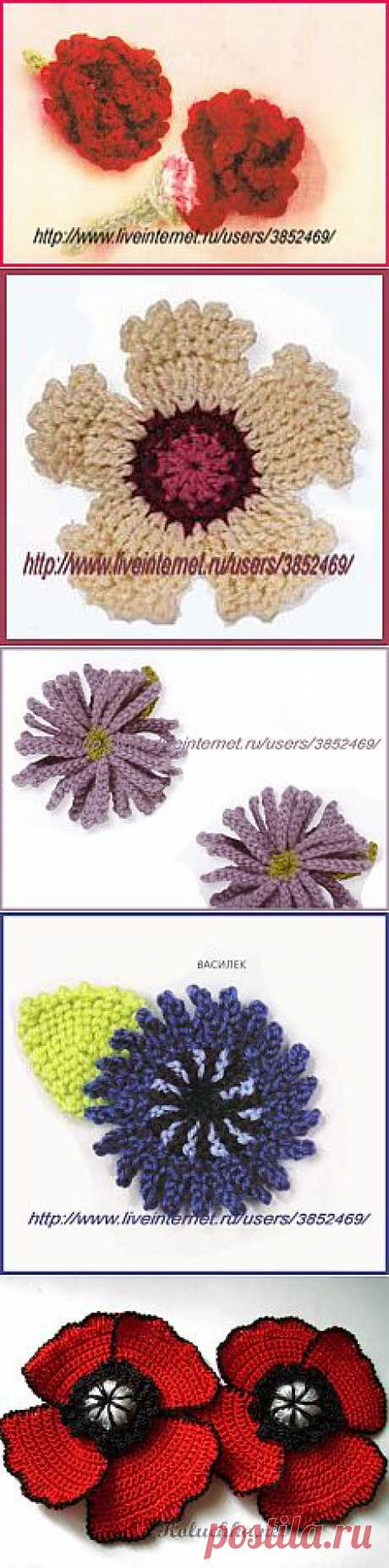 Цветы | Записи в рубрике Цветы | Дневник Лейла_Хилинская
