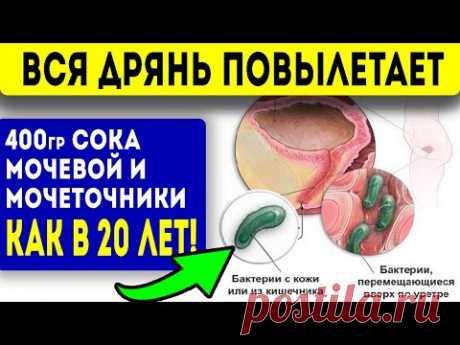 2 стак. ЭТОГО СОКА ВЫГОНИТ из мочевого пузыря, мочеточников и почек всю гадость! Народная медицина!
