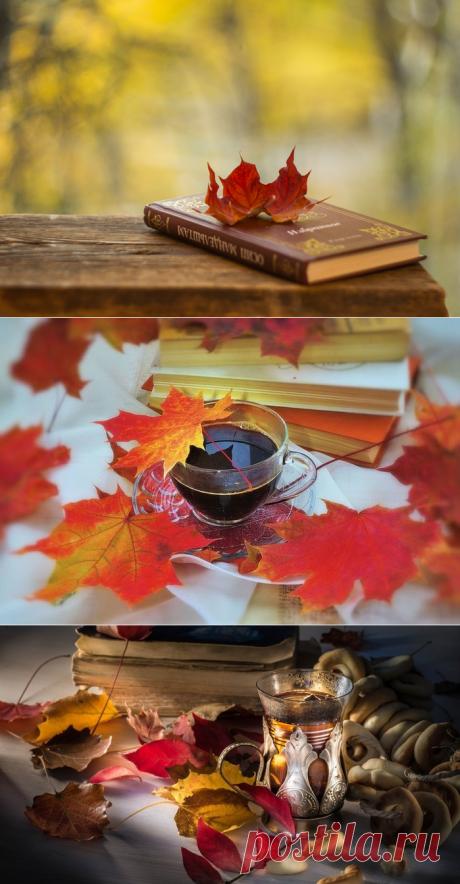 Осенний роман. Натюрморты