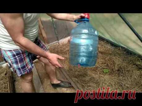 Капельный полив из пластиковых бутылок  или полив для ленивых. - YouTube