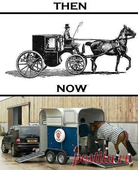 перевозка лошадей: раньше и теперь