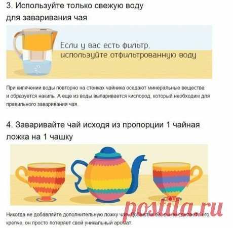 6 основных сортов чая и их секреты