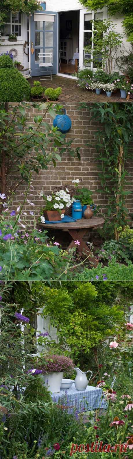 Сад и дом. Идеи для дачи.