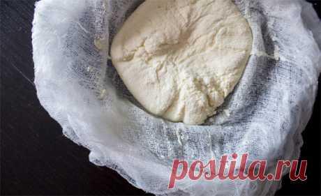 Домашний сыр: 5 способов сделать это лично Гратен, чизкейк, та же паста — существует сотни блюд, в которых сыр выступает связующим ингредиентом. Введение продовольственного эмбарго для этих блюд не прошло бесследно. Какое-то время спасали старые запасы европейских сыров...
