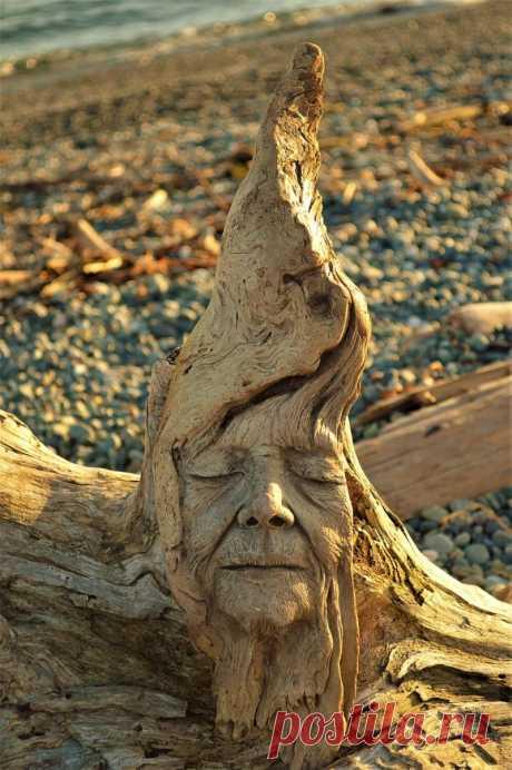 Удивительные функциональные скульптуры из цельного дерева (7фото) » Картины, художники, фотографы на Nevsepic