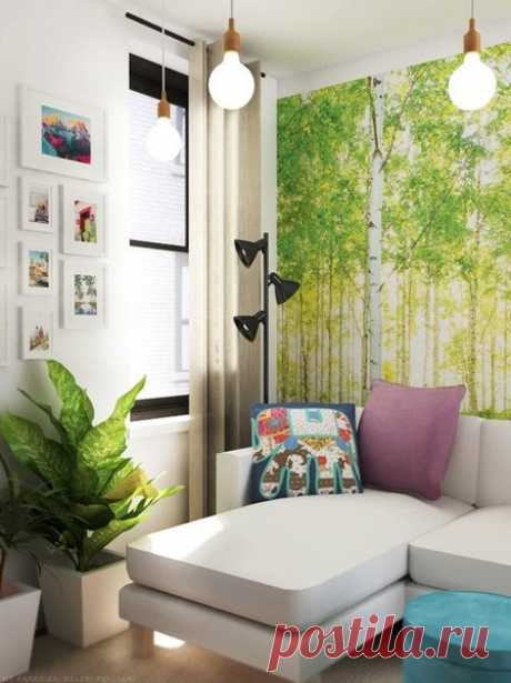 12 советов для владельцев крошечных квартир