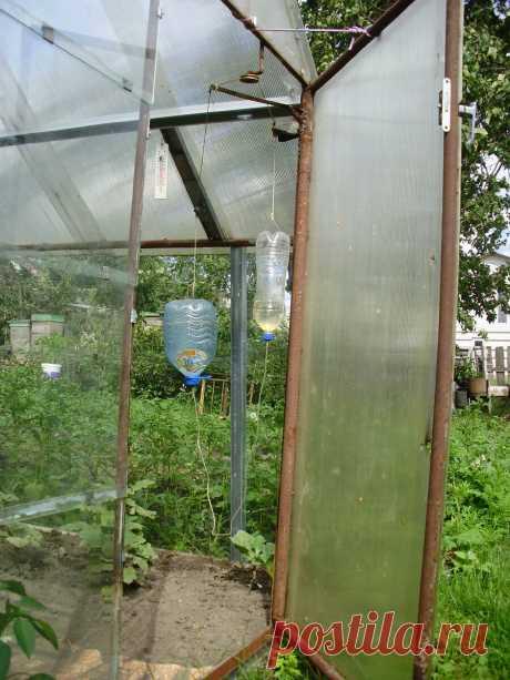 Две бутыли с водой — и теплица открывается и закрывается автоматически. Дачникам на заметку | Маленький сад на краю Вселенной | Яндекс Дзен