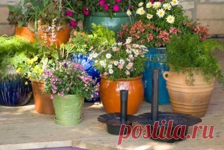 9 свежих инструментов для вашего сада