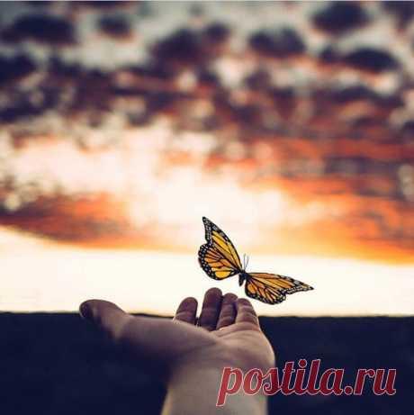 Жизнь научит прощать, но не забывать...Смотреть,но не видеть...Слышать,но не верить...Целовать,но не любить...Уходить и не возвращаться...