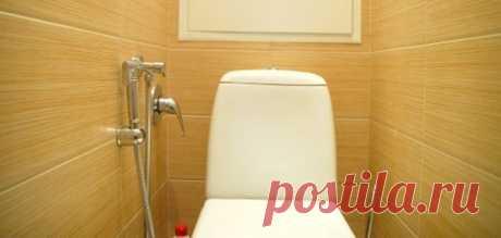 Для чего нужен гигиенический душ в туалете и как его установить — Полезные советы