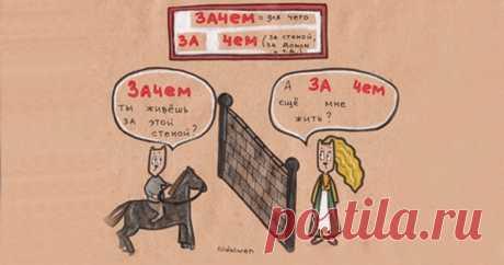 Los Gatitos enseñarán 20 faltas más difundidas del ruso, como escribir es competente.