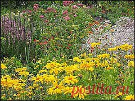 sady007.jpg (изображение «JPEG», 240×180 пикселов)