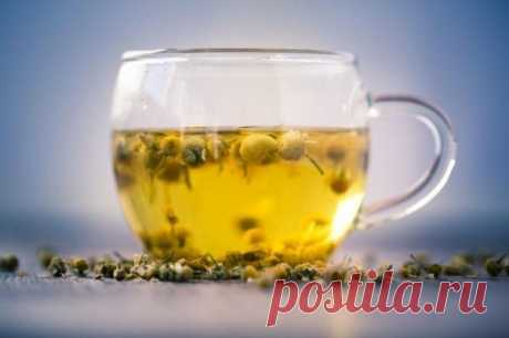 14 Reasons To Have A Cup Of Chamomile Tea Right Now