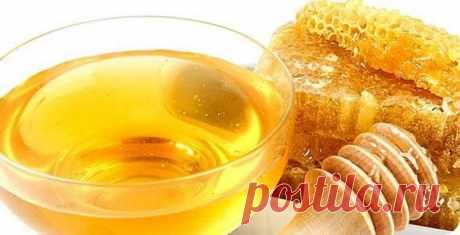 Five recipes for strengthening of an organism on the basis of honey