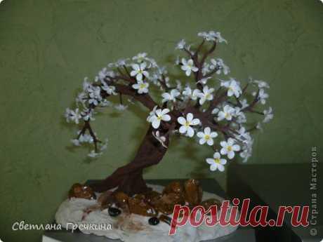 Весеннее дерево может сотворить каждый! (мастер-класс) | ЖЕНСКИЙ МИР