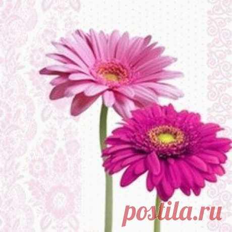 Татьяна Шумаева
