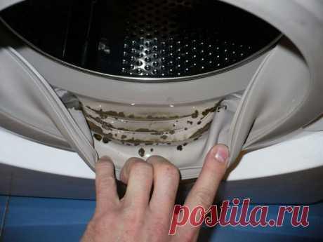 В стиральной машине обнаружена плесень! Хорошо, что я знаю этот чудо-метод… Ты вдруг стала замечать, что после стирки вещи приобретают неприятный запах, а на уплотнительных резинках стиральной машинки или в лоточках для порошка