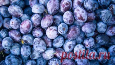 Назван фрукт для борьбы с развитием тромбоза   Слово и Дело