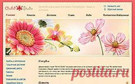 Как сделать сайт бесплатно, создать веб сайт с помощью бесплатного конструктора сайтов онлайн — Nethouse