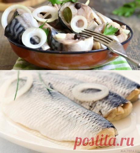 12 способов засолить рыбу дома