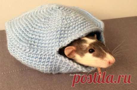 вязание для крысы крючком — Яндекс: нашлось 937тыс.результатов
