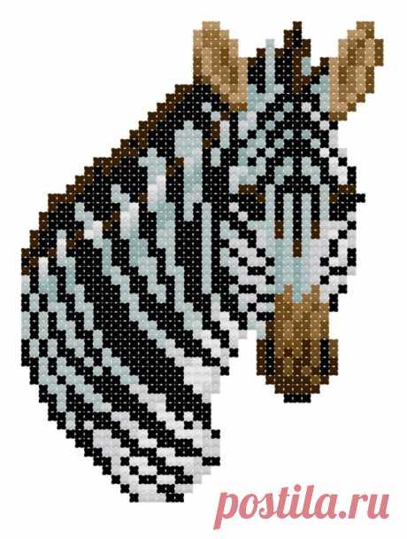 Burchell's Zebra counted cross-stitch chart   Etsy