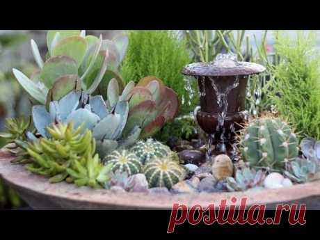 Succulent Fountain Arrangement - Triple Urn Challenge November
