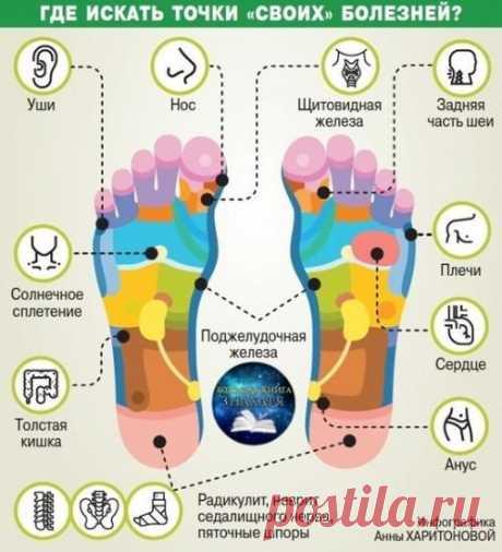 Старение организма начинается с ног - Хитрости Жизни Так какие рецепты есть для сохранения здоровья наших ног, а значит, в конечном счёте и всего организма? Снова к мудрости китайских врачей обратимся. Совет номер 1. гимнастика. Обязательно надо ходить на носочках, на пяточках, а также на внутренней и внешней сторонах стопы. Это укрепляет мышцы и кости ног, улучшает кровообращение, а значит, улучшает работу внутренних […]