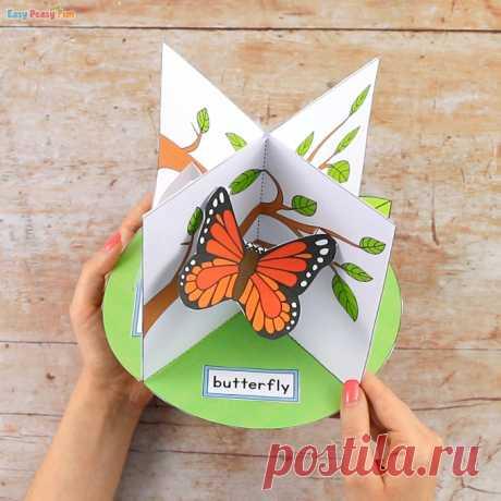 Ремесло жизненного цикла бабочки 3D - легко и весело
