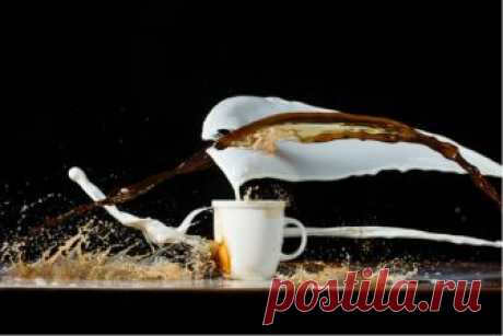 Что нужно знать о напитках на основе эспрессо и молока / на сайте Росконтроль.рф
