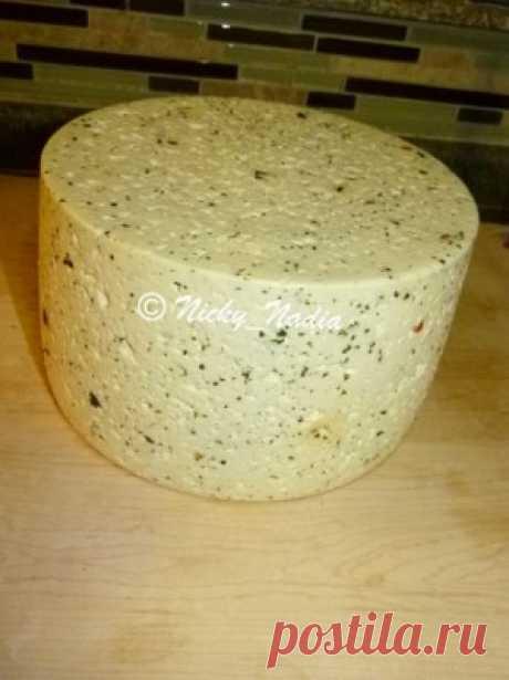 Сыр Гауда (с моими изменениями) : Сыры