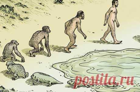 Ученые воссоздали условия, в которых, вероятнее всего, могли появиться первые живые организмы