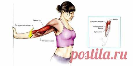Ревитоника - главные упражнения для лица, шеи, спины с фото и видео
