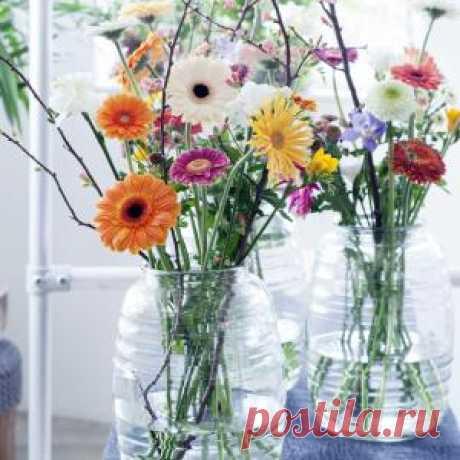 Какие емкости подходят для хранения цветов?