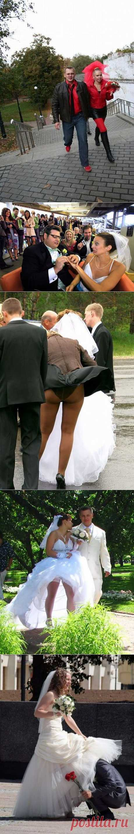 ������� ��������� ���������� (30 ��)смешные свадебные фото