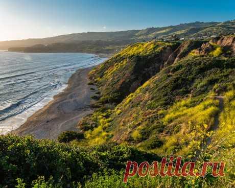 Картинки побережье океан, калифорния, мох, скала, природа, побережье, океан - обои 1280x1024, картинка №365117