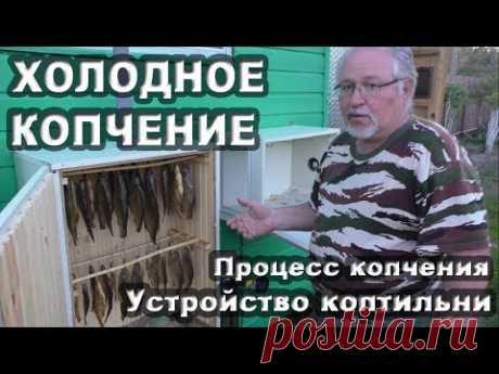 Холодное копчение рыбы. Процесс копчения и устройство коптильни.