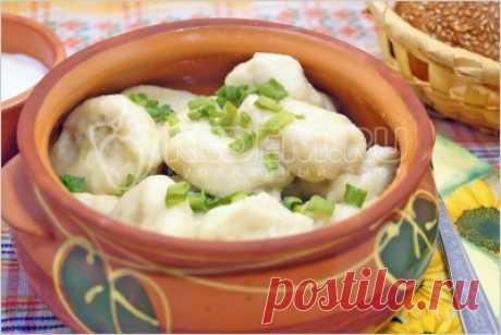 Ленивые вареники с картошкой – Рецепты. Блюда с яйцами, с сыром, молоком. Вторые блюда