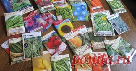 Сколько семян покупать – планирование посадок овощей Часто мы покупаем в разы больше семян, чем нам объективно нужно. Но можно этого избежать, если перед походом в магазин вы составите четкий план с перечнем необходимых культур.