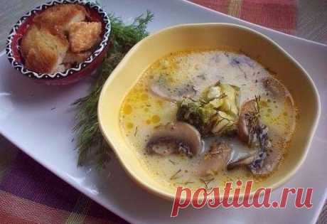 10 recipes of cheese soups\u000d\u000a\u000d\u000a1. Cheese soup (with champignons and broccoli)\u000d\u000a\u000d\u000aIngredients:\u000d\u000a\u000d\u000aChampignons — 5-7 pieces.\u000d\u000aCurd cakes — 2 pieces.\u000d\u000aBroccoli — 200 g\u000d\u000aPotatoes — 1-2 pieces.\u000d\u000aCarrots — 1 piece.\u000d\u000aSalt, vegetable oil for roasting\u000d\u000a\u000d\u000aPreparation:\u000d\u000a\u000d\u000a1. We cut champignons. We fry minutes 5-10. Carrot we rub on a grater and too we fry.\u000d\u000a2. Broccoli is divided on inflorescences, into pieces more small. \u000d\u000a3. It is possible to take fresh broccoli (in a season), it is possible to use also frozen. \u000d\u000a4. In that case before...