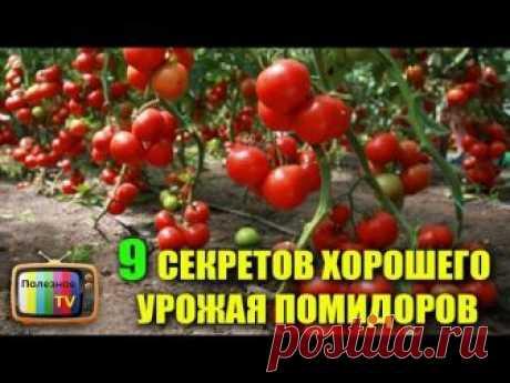 ✔ПОМОЧЬ КАНАЛУ - https://www.donationalerts.ru/r/poleznoetv ✔ Инстаграм - https://www.instagram.com/poleznoe_tv/ ✔ Подпишись - https://www.youtube.com/channel...
