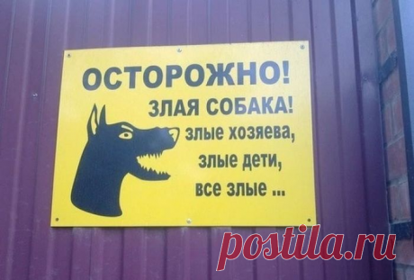 """Кто скрывается за надписью """"Осторожно! Злая собака!""""   Заметки Рыжего хвоста   Яндекс Дзен"""