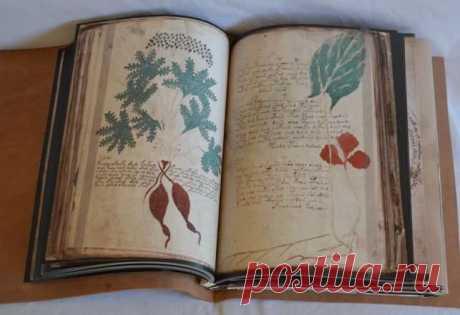 El manuscrito de Voynicha