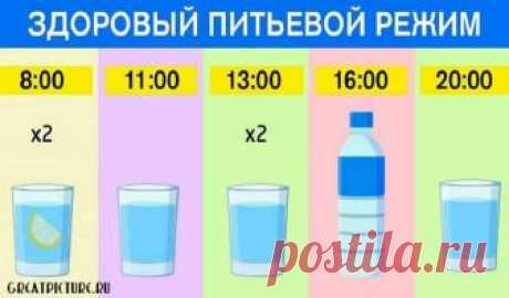График для худеющих: ешь что хочешь и пей воду по часам. Результат — минус 15 % жира! График для худеющих: ешь что хочешь и пей воду по часам. Результат — минус 15 % жира! Плохое самочувствие и головные боли мы объясняем